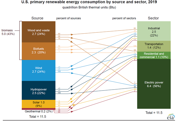 U.S. primary renewable energy consumption by source and sector